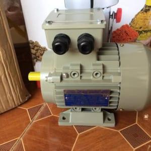 Động cơ điện toàn phát YII 80S-2