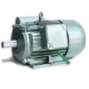 Động cơ điện viethung YII112L-4