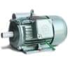 Động cơ điện viethung YII180L-4